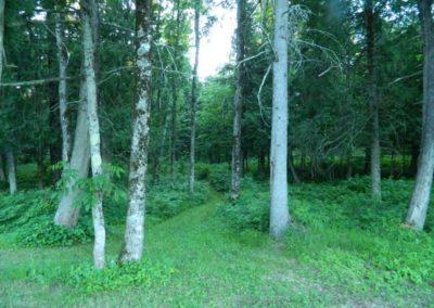Domaine Kaaloo - Chalet à louer : La Tourterelle